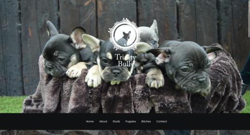 Website Designer Cardiff